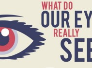 Amazing Facts About The Human Eye – Infographic