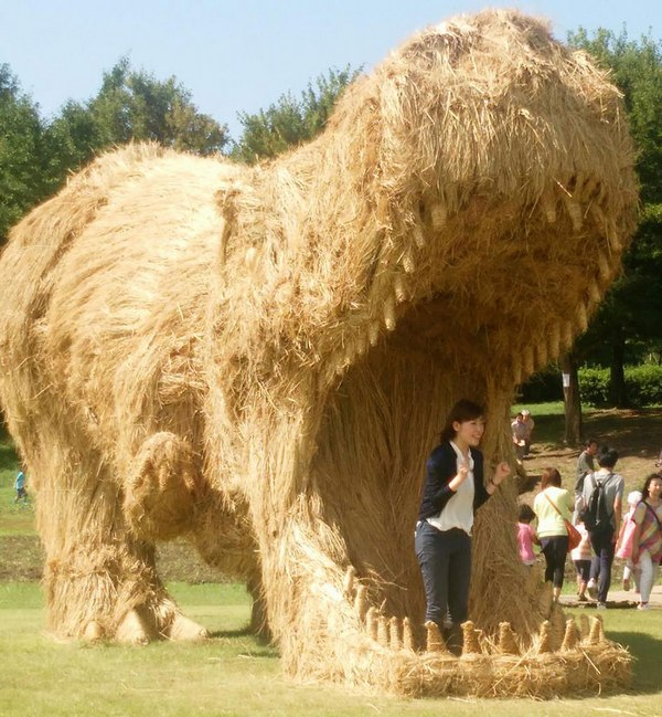 rice-straw-dinosaur-japan-4